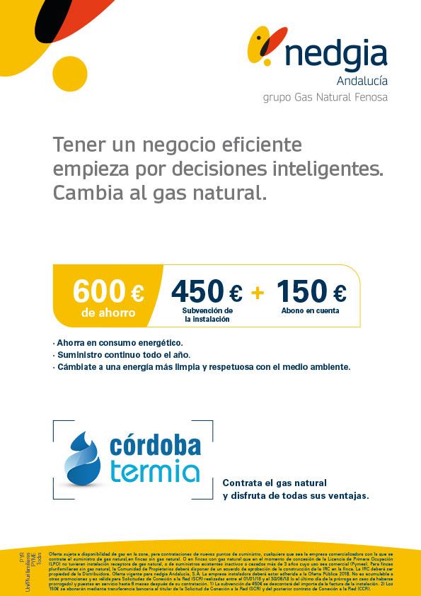 Oferta instalaciones de gas natural Nedgia en Córdoba para PYMES